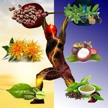 MyLumisan - Aktiviert Stoffwechsel, Fettverbrennung und Muskelaufbau